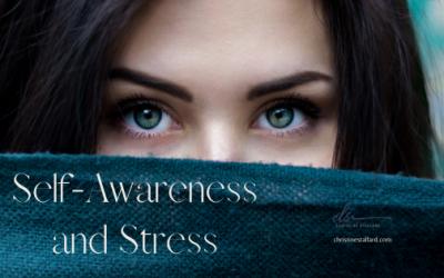 Self-Awareness and Stress